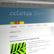 webciccartuja